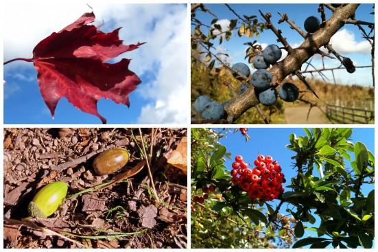 Есенно-романтично