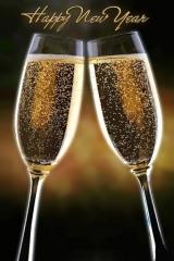 Весело посрещане на Новата 2012Година!