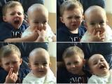 Video Friday: Charlie bit myfinger!