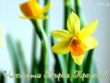 Пролетно почистване наблого-паяжините